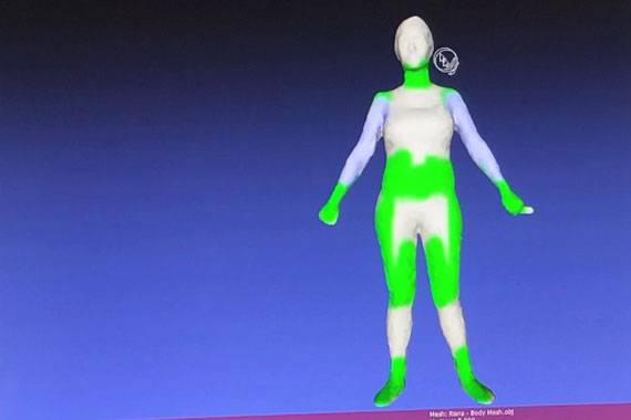 Computer screen showing painted 3D avatar of body