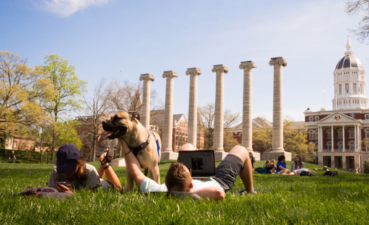 Students and dog relaxing on grass near The Columns on Francis Quadrangle